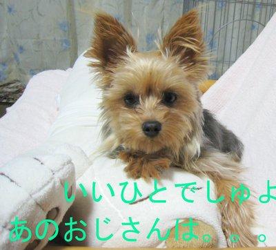 Img_34801