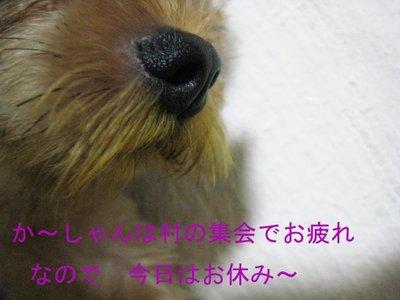 Img_38711