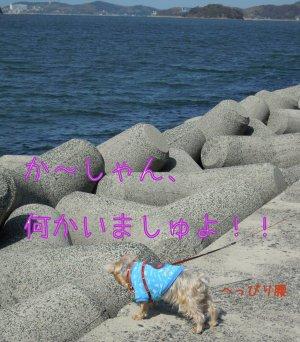 Dscn0958_2